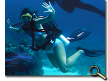 Tropical marine ecology students scuba diving photo