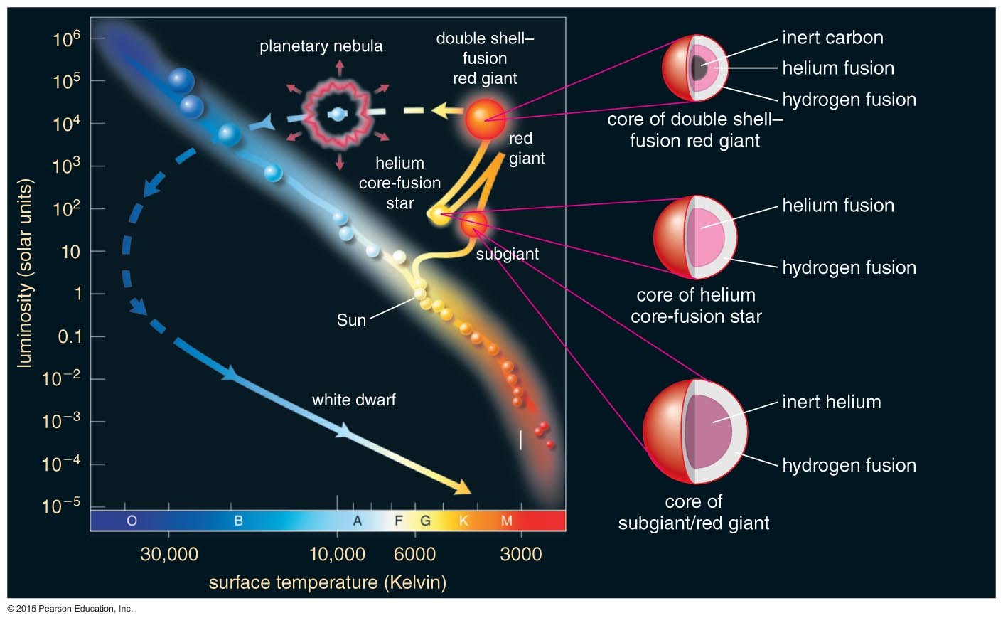 Stellar deaths the post main sequence evolution of a low mass star pooptronica Choice Image